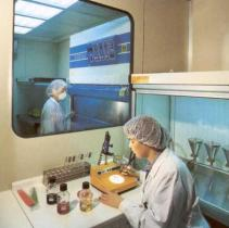 Industria Farmecéutica