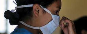 gripe porcina oms