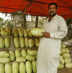 iraq_agriculture