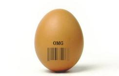 etiquetas_identificativas_o