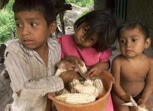 guatemala estado calamidad