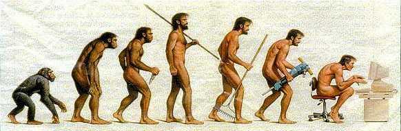evol_human