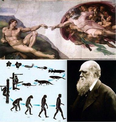 Evolución y Darwin