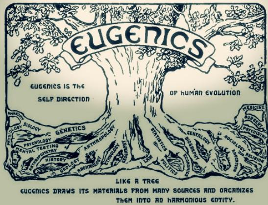 eugenics.jpg?w=606&h=465